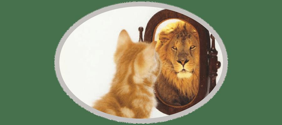 Selbsterkenntnis - Selbstbild vs. Fremdbild